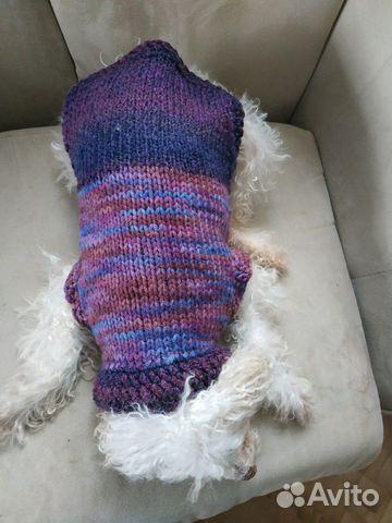 Свитер для собаки 89963896062 купить 5