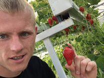 Партнёрство с успешным фермером из Краснодара