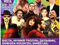 """3 билета на фестиваль """"Дикая мята"""" (28-30 июня)"""