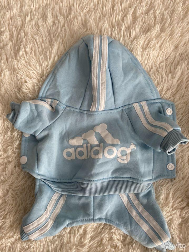 Одежда для собак  89506762401 купить 8