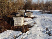 Домики для пчёл