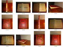 Живописная Россия: (Комплект из одиннадцати книг)